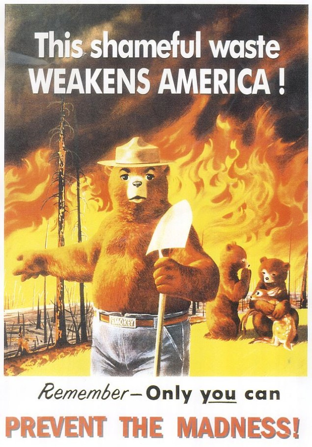 SmokeyBearShamefulWaste1953-visual-rhetoric-example