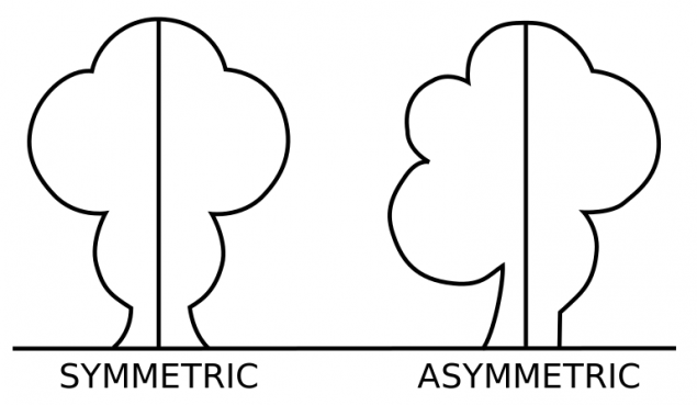 symmetric-and-asymmetric-balance